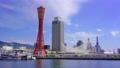 青空と神戸の景色 77114438