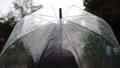 傘をさして歩く女性の後ろ姿 77116685
