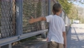 Fingers on the mesh netting. 77120364