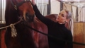 Equestrian - young woman petting a brown horse in the stall 77135836