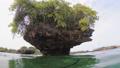 Lagoon at Kwale Island in Menai Bay, Mangroves with Reefs and Rocks, Zanzibar 77141373