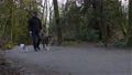 Man walking dogs on the hiking trail 77147893