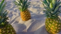 Three pineapples on the sand 77166591