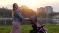 A young mother with a stroller walks in the autumn evening. 77177192