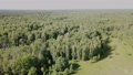 view of picturesque forest landscape in central Russia on summer day 77242850