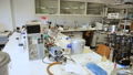 Biochemical laboratory interior with different lab equipment and glassware 77255879