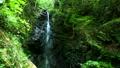 mountain stream, mountain torrent, clear stream 77256545