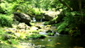 mountain stream, mountain torrent, clear stream 77256580