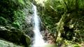 Kanazawa Falls 77256588