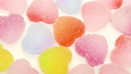 軟糖(彩色 1) 77265625