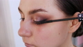 Stylist make-up master applies mascara to the eyelashes of a young model with a special brush, evening eye makeup 77316628