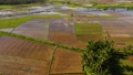 Agriculture in a tropical climate. Mountain landscape with rice fields, top view. 77334451