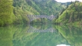 只見線・第1橋梁 ・鳥のさえずり(福島県・三島町) 77404134
