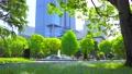 [4K収録, 音声有り]日本の春 東京千代田区 日比谷公園のネモフィラ[zoomout/15sec] 77410488