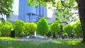 [4K収録, 音声有り]日本の春 東京千代田区 日比谷公園のネモフィラ[zoomin/15sec] 77410489