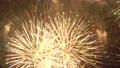 Fireworks 77443502