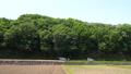 verdure, landscape, scape 77451972