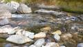 日本・埼玉県・秩父の川辺風景。秩父のあしがくぼ・横瀬川の流れ。5月の風景。 77512794