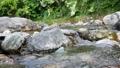 日本・埼玉県・秩父の川辺風景。秩父のあしがくぼ・横瀬川の流れ。5月の風景。 77512797