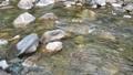 日本・埼玉県・秩父の川辺風景。秩父のあしがくぼ・横瀬川の流れ。5月の風景。 77512802