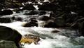 mountain stream, mountain torrent, canyon 77643457