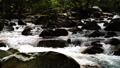 mountain stream, mountain torrent, canyon 77643459