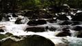 mountain stream, mountain torrent, canyon 77643460