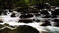mountain stream, mountain torrent, canyon 77643463