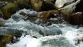 mountain stream, mountain torrent, canyon 77643464