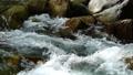 mountain stream, mountain torrent, canyon 77643465