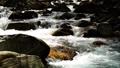 mountain stream, mountain torrent, river 77643466