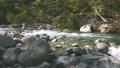 river, clear stream, mountain stream 77671690
