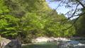 river, clear stream, mountain stream 77671797