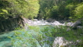 river, clear stream, mountain stream 77671824