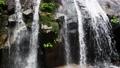 fall, water fall, waterfall 77916784