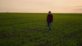 A businessman monitors the work of farmers in the field after a day's work in slow motion. Check the 78093201