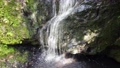 fall, water fall, waterfall 78152577