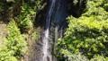 fall, water fall, waterfall 78152578