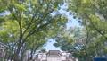 大阪ビジネスパークを車で走行 78260355