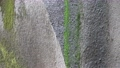 新緑の由布川渓谷(音あり・zoom out) 78407747