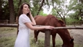 Beautiful woman on the background of a horse. 78492345
