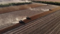 Aerial view of several harvesters on a field of sunflowers. Harvesting sunflower seeds for sunflower oil production 78538359