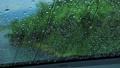 雨の日 車の窓ガラスの水滴 自動車 運転 イメージ 78686079