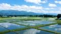 空撮 秋田県の田園風景 6月 快晴 水が張った水田 田植え 日本 78714280