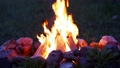 Graded shot of the burning campfire, taken with a fast macro lens in UHD 79089878