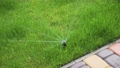 Automatic water sprinkler watering green garden with drops of water on grass 79962569