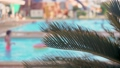 Fern leaves near swimming pool in luxury ocean resort with resting tourists in background out of focus. Branch of beautiful plant or palm tree in spa hotel 80269668