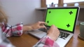 Woman using laptop with green screen. Business, communication, freelance and internet concept. Working at a laptop at home 80313304
