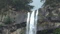 那智的瀑布 80415733