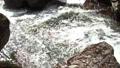 Otome Falls 80420090